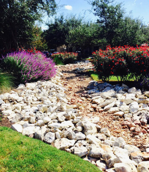 austin commercial landscaping services