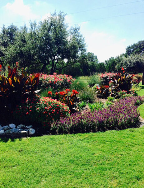austin tx commercial landscaping