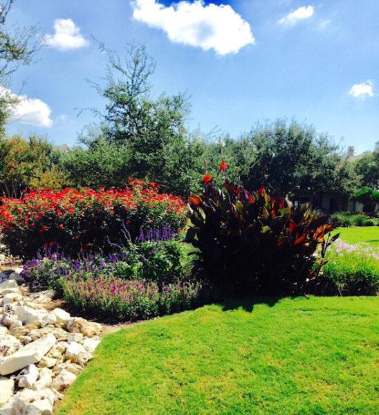 commercial landscaping austin