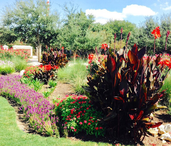 commercial landscaping austin tx