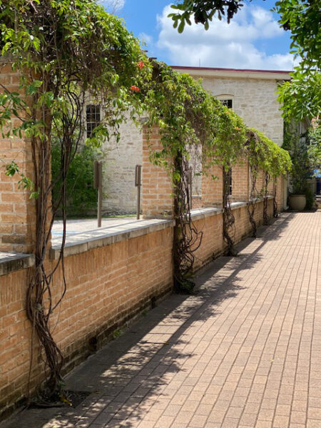 commercial landscaping company austin