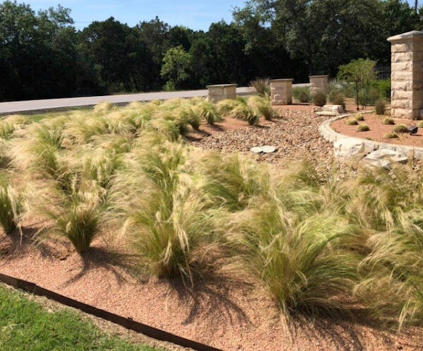 commercial landscaping company austin tx