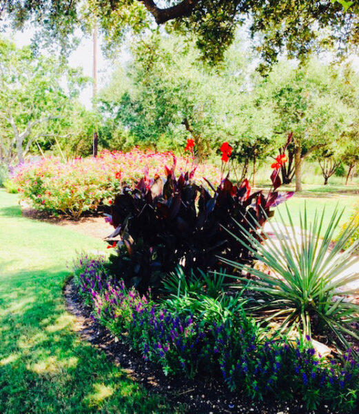 commercial landscaping services austin tx