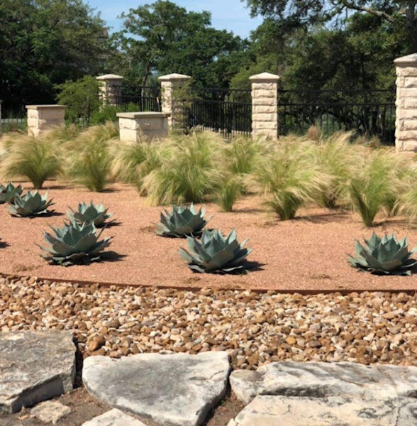 professional commercial landscaping service